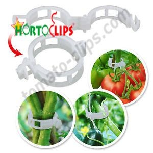 Using clips in the crops of various vegetables